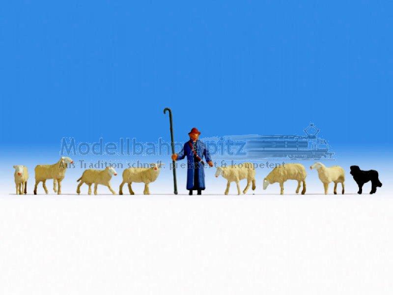 Noch 15748 Schafe und Schäfer